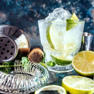 3-Laender-Gin-Tasting-UPG2021